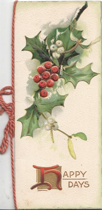 HAPPY DAYS(H illuminated)below berried holly  & mistletoe