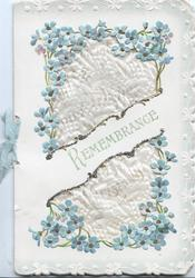 REMEMBRANCE in pale green across front, white silk surrounded by forget-me-nots, white floral marginal design