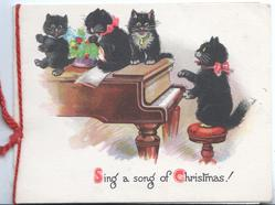 SING A SONG OF CHRISTMAS! black kitten plays piano 3 black kittens on top of piano as another plays