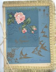 A LOVE TOKEN in blue at base, pink roses upper left, birds of happiness fly down