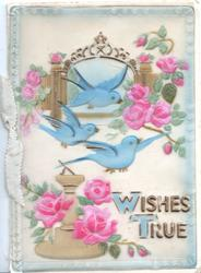 on celluloid front WISHES TRUE(W & T illluminated) below 3 bluebirds, many pink roses around