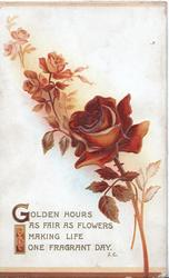 GOLDEN HOURS AS FAIR AS FLOWERS MAKING LIFE ONE FRAGRANT DAY, bronzed roses