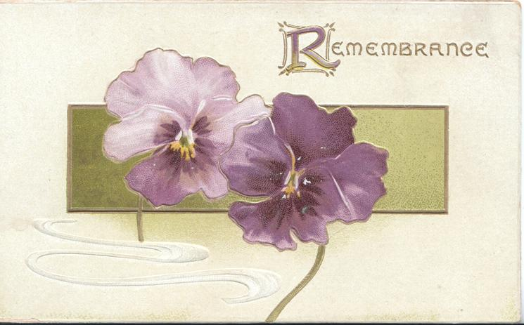 REMEMBRANCE(R illuminated) 2 purple pansies