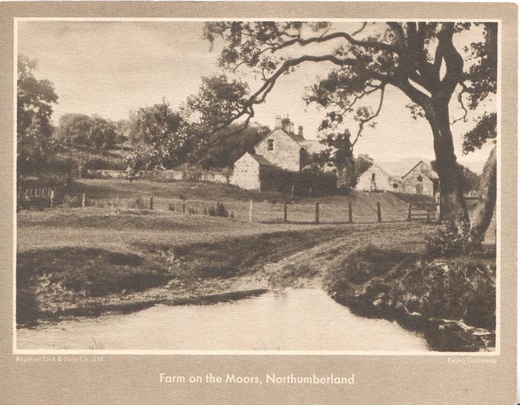 FARM ON THE MOORS, NORTHUMBERLAND