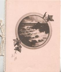 no front title, circular inset of black & white seascape, scant ivy leaves, pale pink background