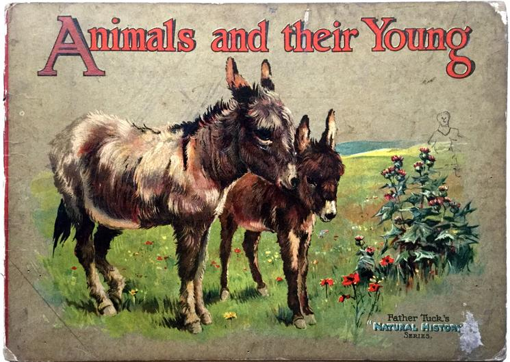 ANIMALS AND THEIR YOUNG