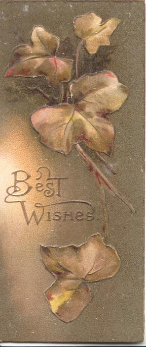 BEST WISHES in gilt left, bronzed ivy leaves  above & below, brown background