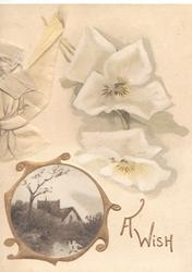 A WISH in gilt below stylised white pansies, gilt bordered  small circular rural inset