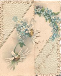 FORGET-ME-NOT on right lower corner, daisies & forget-me-nots on left flap, more forget-me-nots above