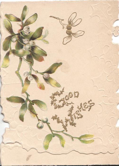 GOOD WISHES(G &W illuminated) mistletoe leaves & berries, white background & design