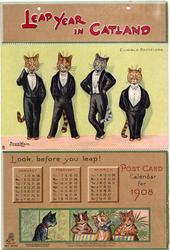 LEAP YEAR IN CATLAND POSCTCARD CALENDAR FOR 1908