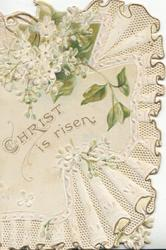 CHRIST IS RISEN in gilt below white lilac, embossed design right