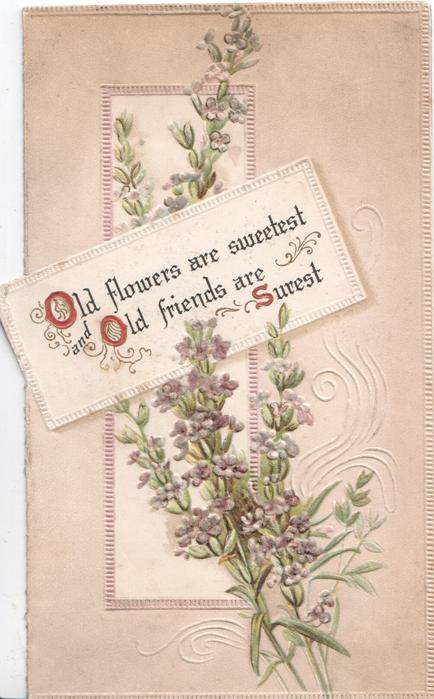 OLD FLOWERS ARE SWEETEST OLD FRIENDS ARE SUREST(illuminated) on white plaque over lavender