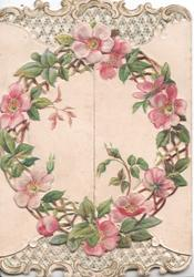 no front title, pink wild roses in leafy circle across 2 flaps