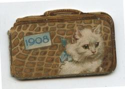 1908 white cat with blue ribbon