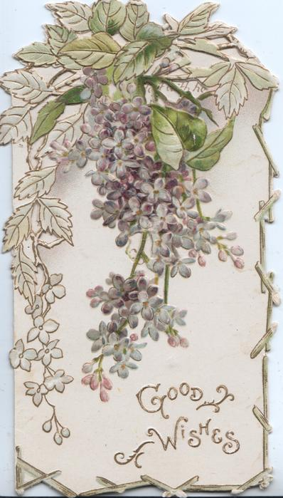 GOOD WISHES in gilt below, perforated violets hanging below virginia creeper leaves