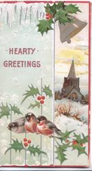 HEARTY GREETINGS in gilt, 3 robins perch on holly below church in snow, bell & holly above