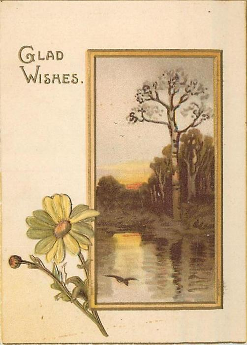 GLAD WISHES inset rural scene of trees & water's edge at dusk, yellow daisy lower left