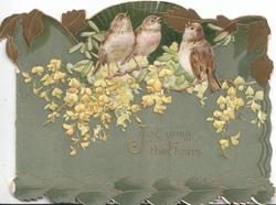 JOY WING THE HOURS in gilt below 3 sparrows among yellow blossom