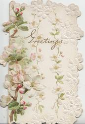 GREETINGS in gilt design, white & pale pink apple blossom in vertical chains with white design