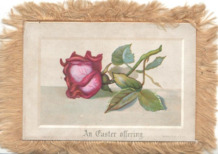 AN EASTER OFFERING below red rose