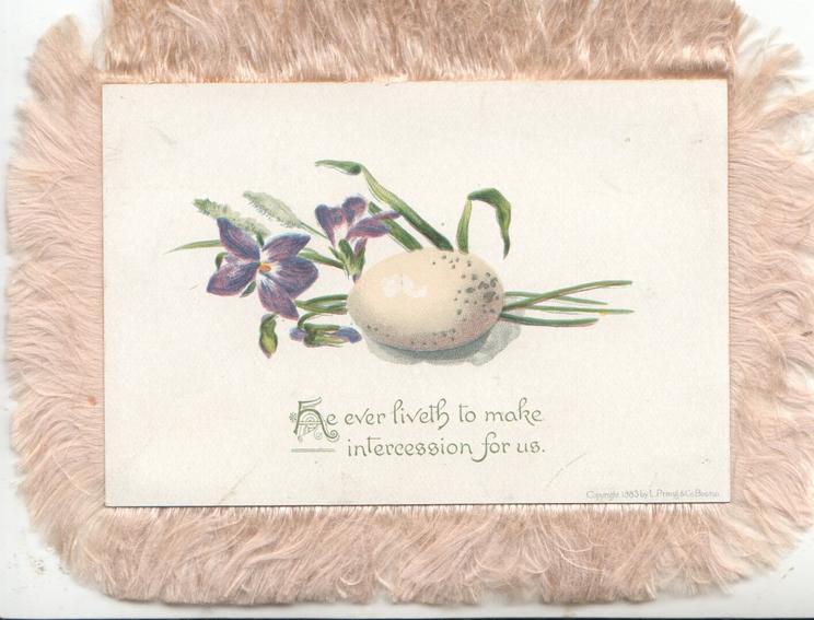 HE EVER LIVETH TO MAKE INTERCESSION FOR US, violets & egg