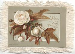 I WISH YOU A HAPPY BIRTHDAY  white roses come through oblong panel, green margins