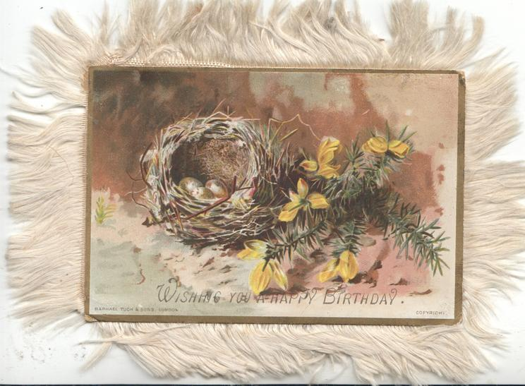 WISHING YOU A HAPPY BIRTHDAY  yellow flowers & evergreens right of nest with eggs,  gilt margins