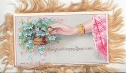 A BRIGHT AND HAPPY CHRISTMAS hand reaches out to forget-me-nots, pink shawl, pale grey background