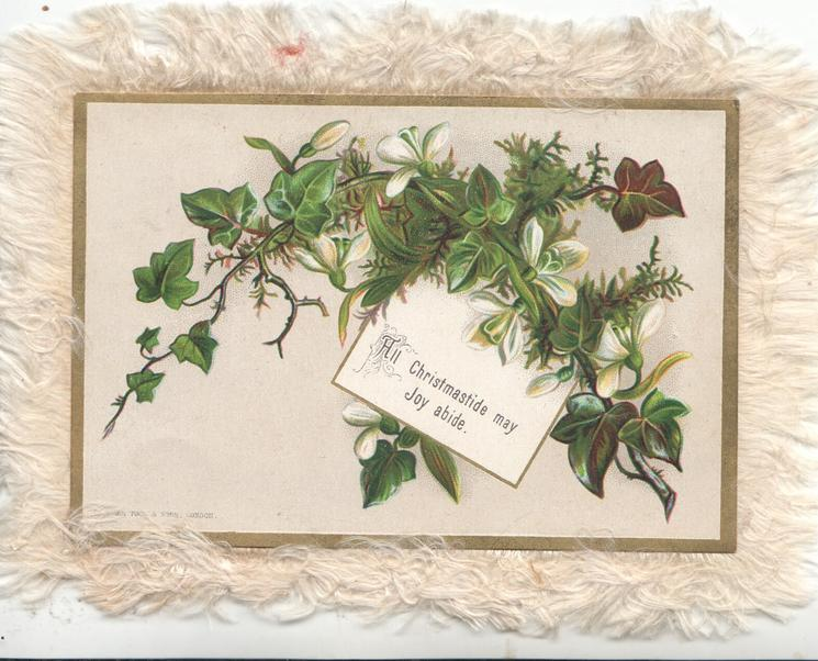 ALL CHRISTMASTIDE MAY JOY ABIDE ivy & white flowers