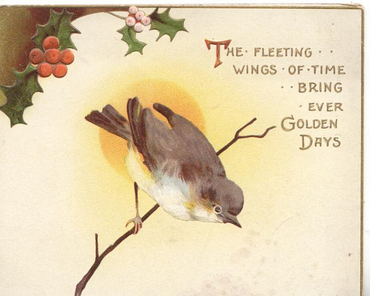 THE FLEETING WINGS OF TIME BRING EVER GOLDEN DAYS, perched white breasted brown bird, holly above
