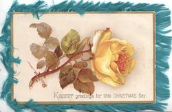KINDEST GREETINGS FOR THIS CHRISTMAS DAY yellow rose