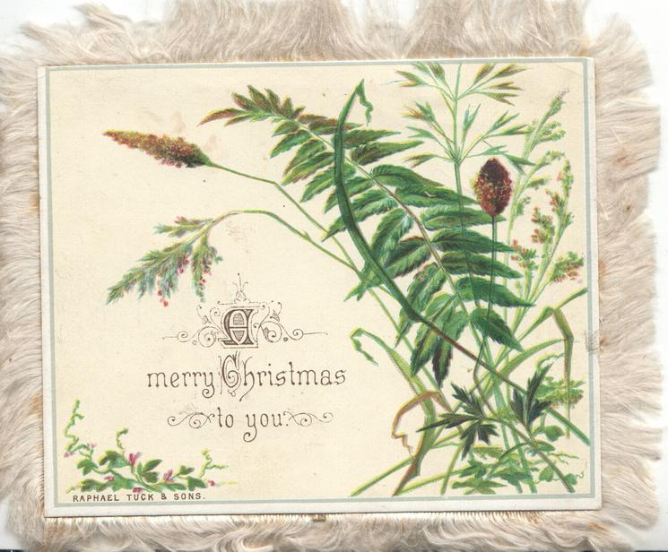 A MERRY CHRISTMAS TO YOU grasses & leaves