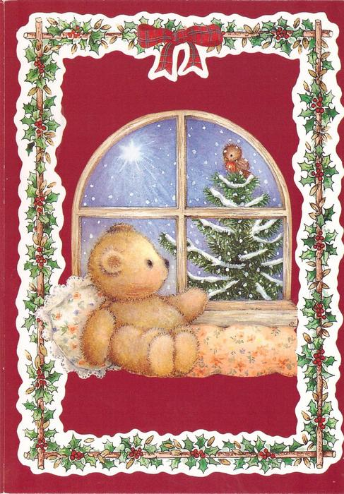 no front title, teddy bear looks out window at robin atop snowy evergreen, holly border