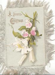 A JOYFUL CHRISTMAS(A & C illuminated) pink sweatpeas & white lilies