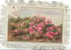 A HAPPY CHRISTMAS top left on small plaque, pink flowers on hillside