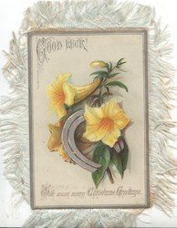 GOOD LUCK! WITH MANY CHRISTMAS GREETINGS above & below yellow trumpet flowers & metal horse-shoe