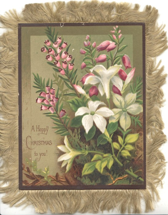 A HAPPY CHRISTMAS TO YOU! purple heather & white flowers, olive background