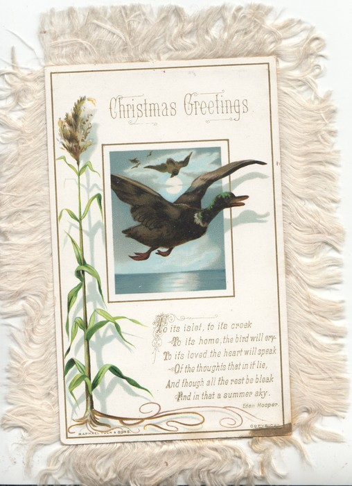 A HAPPY CHRISTMAS CENTRAL INSET OF GULL DIVING OVER SEA, verse below:- NOTHING THAT THE BREEZES BRING NOTHING THAT THE BILLOWS BEAR IS SO LIGHT AS FANCEY'S WING RESTING ON REMEMBRANCE FAIR