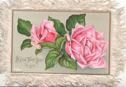 A GUID NEW YEAR TO YOU 2 pink roses