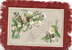 AT THIS CHRISTMAS TIME MAY THE SWEETEST CHIME IN YOUR OWN YOUNG HEART BE FOUND among white daisies  with yellow centres