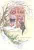 WISHING YOU black cat looks through perforated window into stocked pantry, snowy tree left