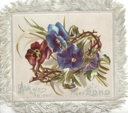 ALL GLORY TO OUR RISEN LORD 2 blue & one purple pansy on frame of rose bush stems