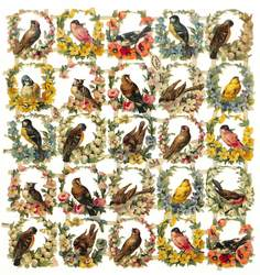 birds within floral wreaths