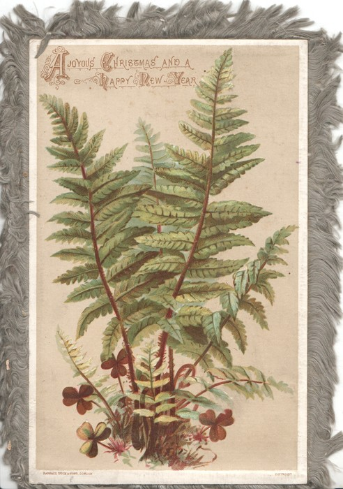 A JOYOUS CHRISTMAS AND A HAPPY NEW YEAR ferns & scant clover