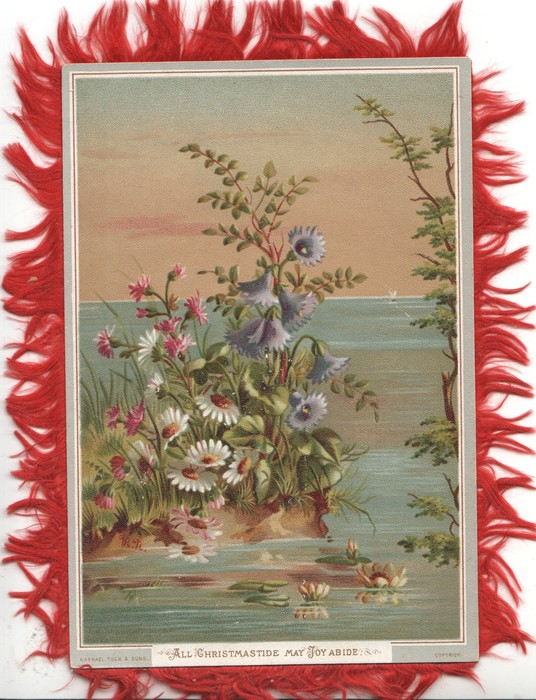 ALL CHRISTMASTIDE MAY JOY ABIDE white, red & blue daisies beside lake