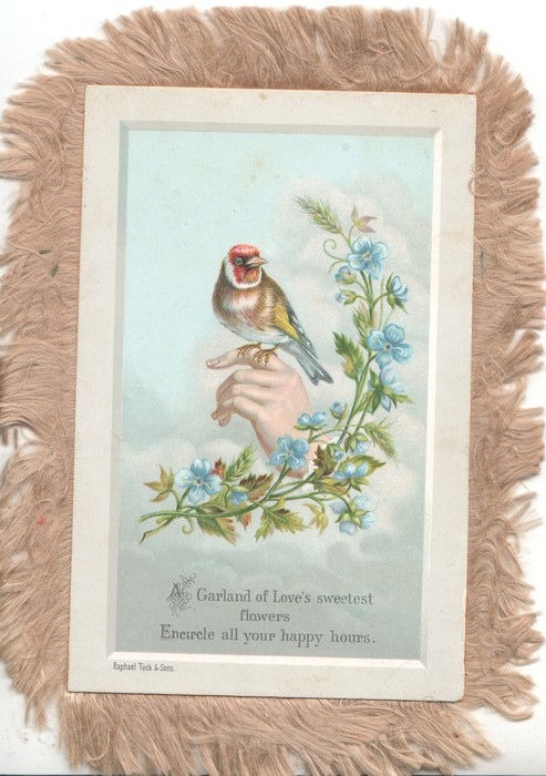 A GARLAND OF LOVE'S SWEETEST FLOWERS ENCIRCLE ALL YOUR HAPPY HOURS. finch perched on hand, forget-me-nots right