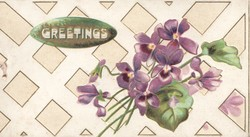 GREETINGS in white on gold plaque top left violets below right on front of square designs