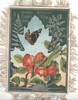 A MERRY CHRISTMAS A GOLDEN YEAR above butterfly & red fruit tree blossoms, silver ferns, deep green background