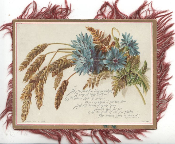 MAY THE NEW YEAR BRING YOU GLADNESS.... verse below blue cornflowers & wheat
